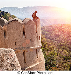Kumbhalgarh fort, Rajasthan, India Kumbhalgarh is a Mewar...