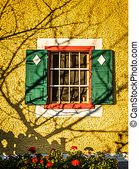 Window with green shutters and decorative tree shadow on a...