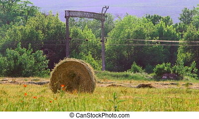 Haystack in a field - Countryside view with a haystack,...