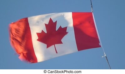 Canadian Flag flapping in the wind1 - Canadian National Flag...