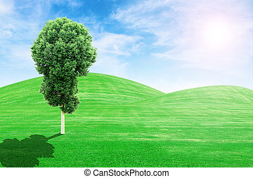 green grass hills and tree with sun and sk - green grass...