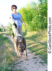 Woman runner running with dog on country road in summer nature