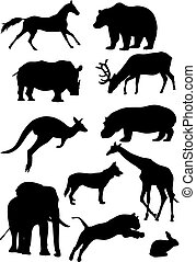 Silhouettes of mammal - The illustration shows animals, some...