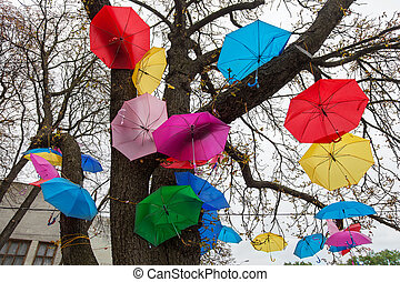Festival umbrellas - Colorful umbrellas are hung on the tree