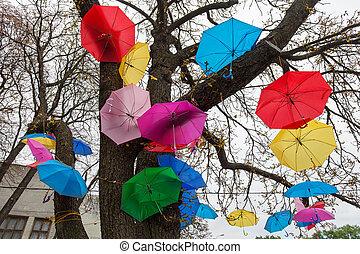 fiesta, paraguas