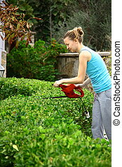 woman pruning shrub with tool in garden - worker pruning...