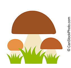 Boletus mushrooms family Vector illustration