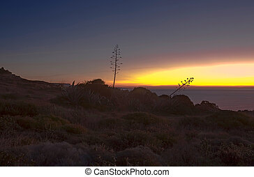 Praia Da Luz sunrise - The sun sunrise over the Praia da Luz...
