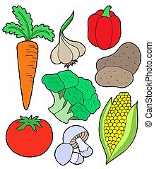Vegatable collection - Vegetable collection on white...