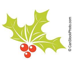 Natale, agrifoglio, bacca
