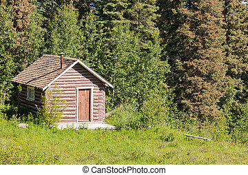 Small rural log cabin hut on clearing in forest