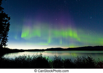 Summer night Northern lights over Lake Laberge - Dancing...