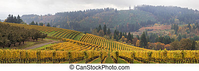 Dundee Oregon Vineyards Scenic Panorama - Dundee Oregon...