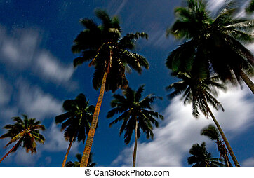Aitutaki Lagoon Cook Islands - Landscape at night of coconut...