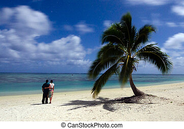Young couple stand beside a coconut palm tree and watches...