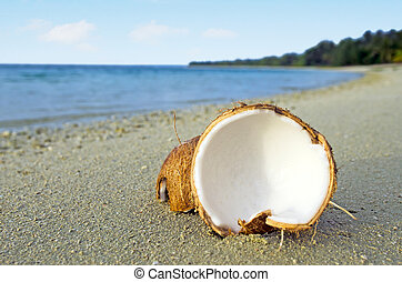 Opened coconut on sandy sea shore of tropical island.Photo...