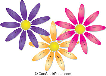Three pretty spring flowers - Vector illustration of three...