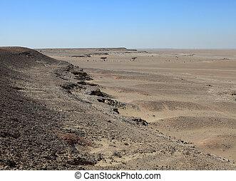 Qatari desert - A view of the desert in south Qatar, near Al...