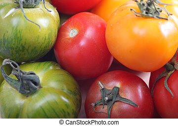 Tomato varieties red green and yellow - Obvious genetic...
