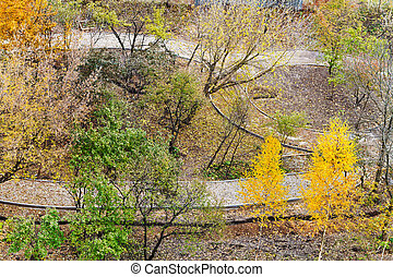 walking paths in urban park in autumn - above view of...