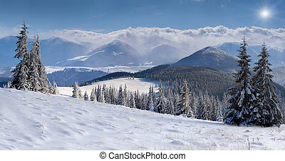 Panorama of the winter mountains