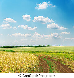 dirty road in fields and clouds on sky