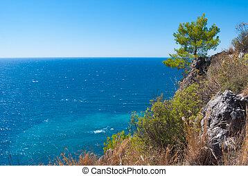 Alanya - pine against sea, Alanya peninsula, Antalya, Turkey