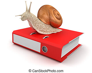 Snail and Document