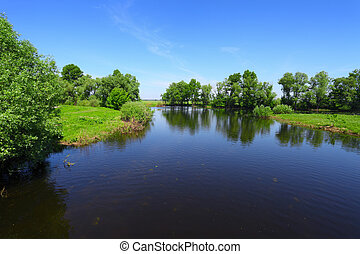 landscape with river and green trees - landscape with calm...