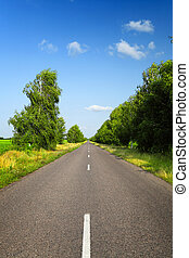 long asphalt road with green trees in countryside at summer...