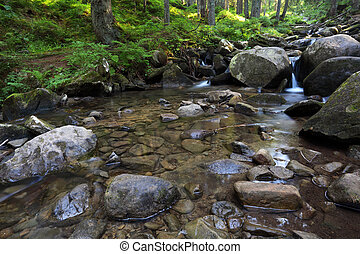 flowing mountain stream and stones