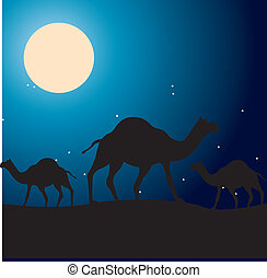camels design over night sky background  vector illustration