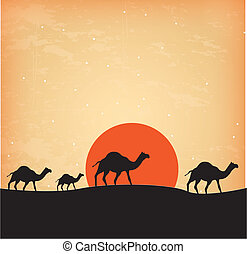 camels design over sunset background vector illustration