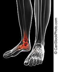 Highlighted ankle - 3d rendered illustration of the painful...