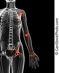 Highlighted joints - 3d rendered illustration of the painful...