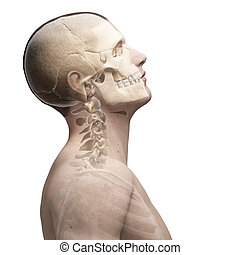 Guy bending his neck - 3d rendered illustration of a guy...