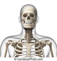Guy bending his neck - 3d rendered illustration of a guy...
