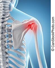 Highlighted shoulder joint - 3d rendered illustration of a...