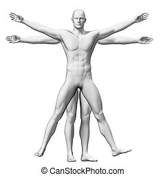 Vitruvian man - 3d rendered illustration of a vitruvian man