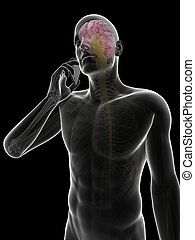 Mobile phone influence on the brain - 3d rendered...
