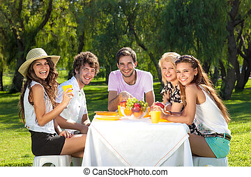 Group of young teenagers on a picnic - Group of young...