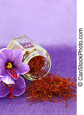 Dried saffron spice and Saffron flower