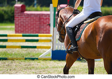 equitación, deporte