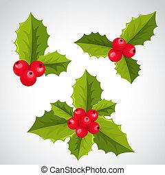 Christmas holly decorations - Ilex aquifolium decor, also...
