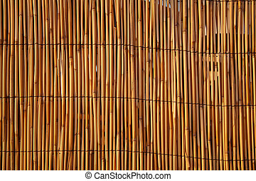 Close up of a bamboo fence, lit by warm evening sunlight