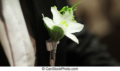 Grooms boutonniere - Groom adjusts her wedding boutonniere