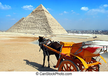 giza pyramids, cairo, egypt - Pyramid with Horsedrawn...