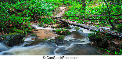 Footbridge across the falls in rainforest at Doi Inthanon Nation