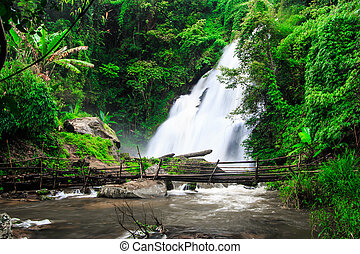 Pha Dok Xu waterfall in rainforest at Doi Inthanon National...