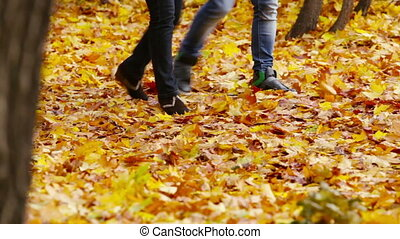 Ankle-deep In Leaves - Group of young people walking in the...